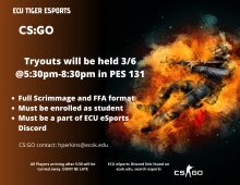 CS:GO Flyer